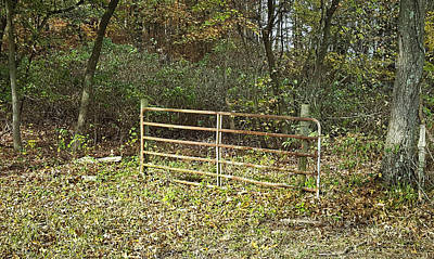 Photograph - Pasture Gate 3 by Greg Jackson