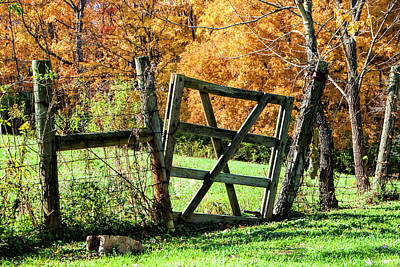 Photograph - Pasture Gate by Phyllis Taylor