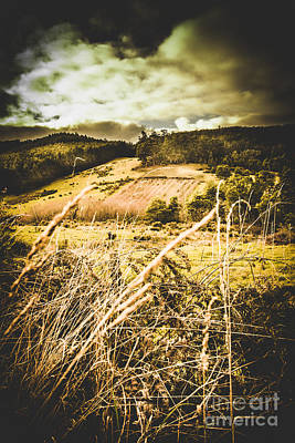Pasture Scenes Photograph - Pasture Of Darkness by Jorgo Photography - Wall Art Gallery