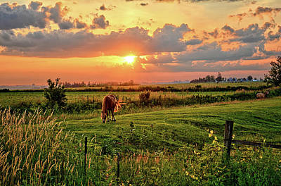 Photograph - Pastures Of Butler Center by Bonfire Photography