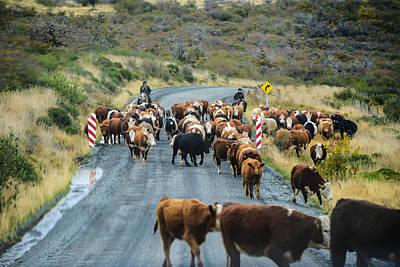 Photograph - Patagonia Gauchos by Walt Sterneman