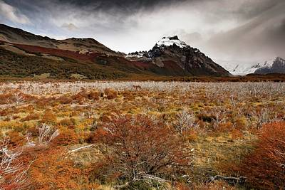 Photograph - Patagonia Valley by Ryan Weddle
