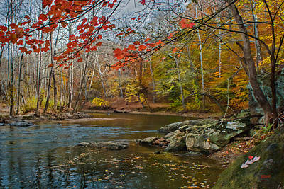 Photograph - Patapsco River - Fall Foliage by Dana Sohr