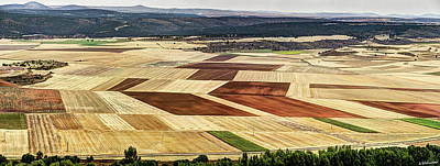 Photograph - Patchwork Of Crops By The Duero River by Weston Westmoreland