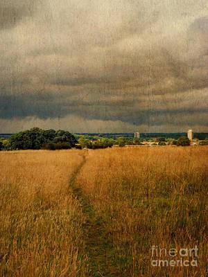 Path Across The Common Art Print by Nigel Bangert