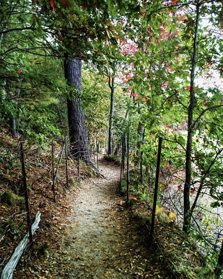 Photograph - Path Along The Pond by Ike Krieger