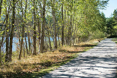 Photograph - Path Around The Lake by Tom Cochran