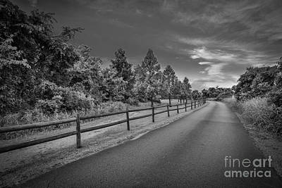 Photograph - Path - Black And White by Mina Isaac