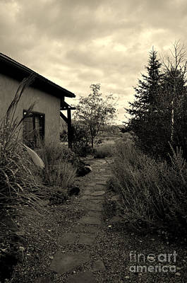 Photograph - Path By The Casita by Anjanette Douglas