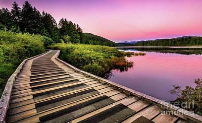 Path By The Lake Art Print by Rod Jellison