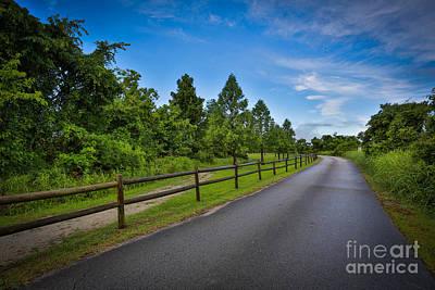 Photograph - Path - Color by Mina Isaac