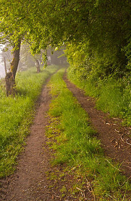Photograph - Path From Bullock Lake by Ken Ketchum