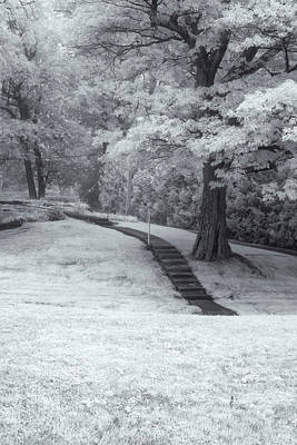 Photograph - Path In Black And White by Tom Singleton