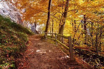 Photograph - Path In Golden Woods. Fortification Koenigstein by Jenny Rainbow
