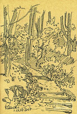 Digital Art - Path In The Forest Fountain Pen Ink Drawing by Frank Ramspott