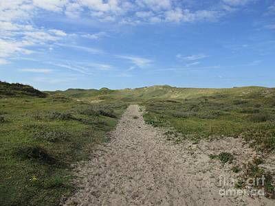 Photograph - Path In The Noordhollandse Duinreservaat by Chani Demuijlder