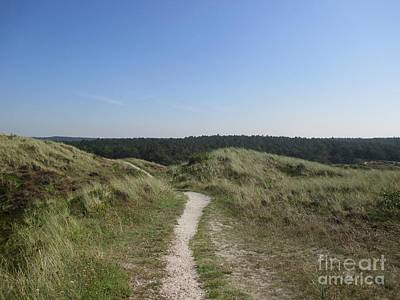 Photograph - Path In The Dunes Of Schoorl by Chani Demuijlder