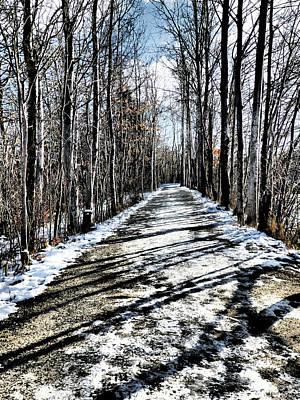 Path In Winter Art Print