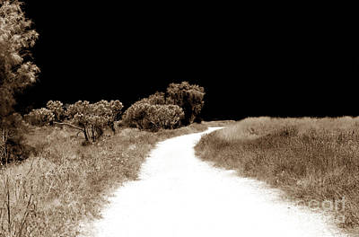 Paphos Photograph - Path Into The Dark by John Rizzuto