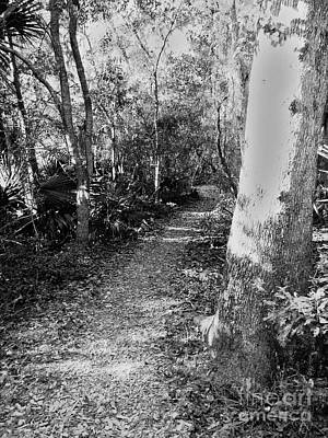 Black And White Photograph - Path Less Taken by Leslie Revels Andrews