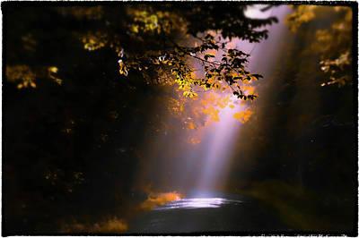Photograph - Path Less Traveled by Garett Gabriel