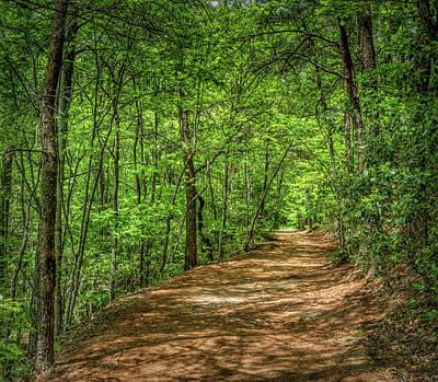 Path Less Travelled Art Print