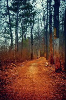 Photograph - Path by Lilia D