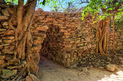 Photograph - Path Of The Ancients - Mayan Ruins - Mexico by Jason Politte