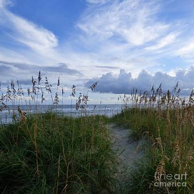 Photograph - Path Over The Dunes by Jean Wright
