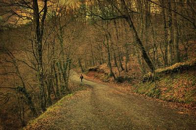 Impressionism Photos - Path by Zapista Zapista