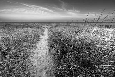 Lake Michigan Photograph - Path The Pierport Beach In Black And White by Twenty Two North Photography