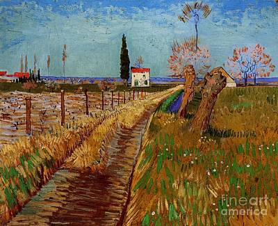 Painting - Path Through A Field With Willows by Celestial Images