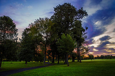 Photograph - Path Through Delaware Park Oaks by Chris Bordeleau