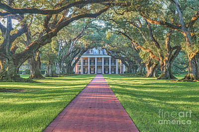 Plantations Photograph - Path Through Oak Alley by Tod and Cynthia Grubbs