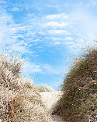 Photograph - Path Through The Dunes by Helen Northcott