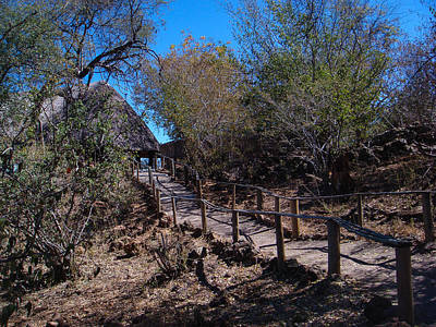 Photograph - Path To Baobab Lodge by Karen Zuk Rosenblatt