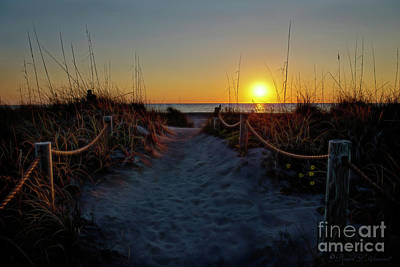 Photograph - Path To Beach by David Arment