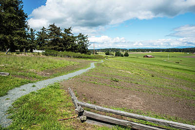 Photograph - Path To Ebey's Prairie by Tom Cochran