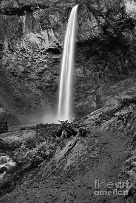 Photograph - Path To Elowah Falls Black And White by Adam Jewell