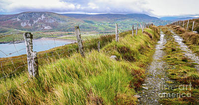 Photograph - Path To Glencolmcille Ireland by Lexa Harpell