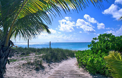 Photograph - Path To Grace Bay, Turks And Caicos by Marie Hicks