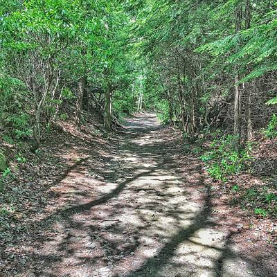 Photograph - Path To Greatness by Mike Dunn