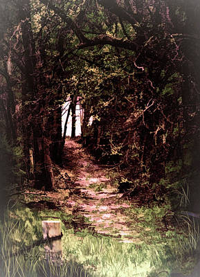 Photograph - Path To Nowhere by Bonnie Willis