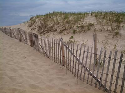 Photograph - Path To Provincetown by Michael Tieman
