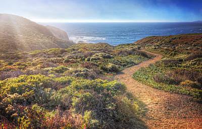 Path To South Rodeo Beach - Marin County California #2 Art Print by Jennifer Rondinelli Reilly - Fine Art Photography