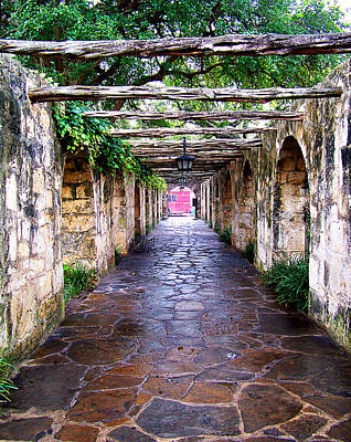 Photograph - Path To The Alamo by Anthony Jones