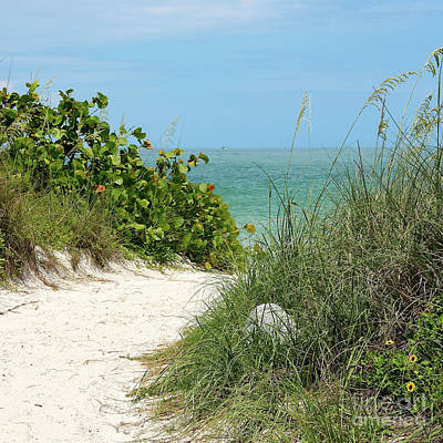 Photograph - Path To The Beach by Carol Groenen