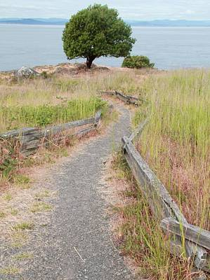 Photograph - Path To The Beach by Dan Sproul