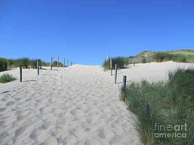 Photograph - Path To The Beach In The Noordhollandse Duinreservaat by Chani Demuijlder