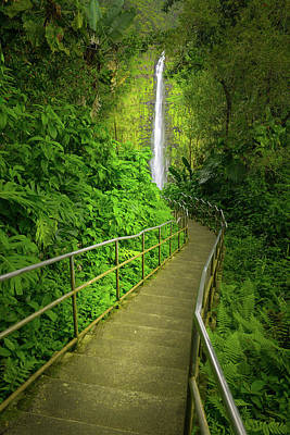 Photograph - Path To The Falls by Mark Robert Rogers